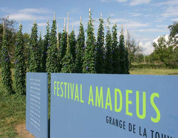 festival amadeus 1988-2004